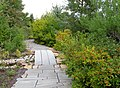 U.S. Botanic Garden in September (23800511775).jpg
