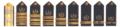 USMS Shoulder Boards.png