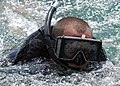 US Navy 050913-N-3019M-009 Fire Controlman 2nd Class Matthew Paga, assigned to the guided missile destroyer USS Chung-Hoon (DDG 93), simulates a swimmer attack scenario during an anti-terrorism-force protection exercise.jpg