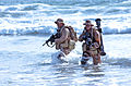 United States Navy SEALs 550.jpg