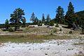 Upper Geyser Basin Yellowstone 01.JPG