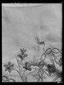 Väst, broderad av Lovisa Ulrika till Fredrik Adolf, 1770-tal - Livrustkammaren - 2680.tif