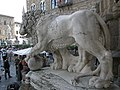 Vaccas lion 1.jpg