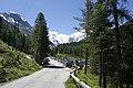 Vadret da Morteratsch - panoramio (4).jpg