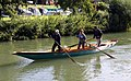 Venetian rowers on the River Thames (geograph 3315901).jpg