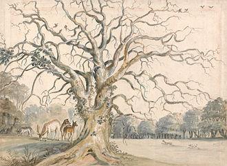 William Byron, 4th Baron Byron - View of a Park with Deer, William Byron, 4th Baron Byron, Yale Center for British Art.