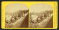 View of an unidentified garden showing topiary work and walkways, by Seaver, C. (Charles) 2.png