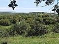 View of general terrain near Midras ruins.jpg