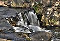 Virginia Water (7168359575).jpg