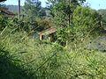 Visão de trás da vila do horto 3.jpg