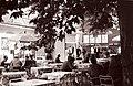 Vrt Kolodvorske restavracije v Celju 1960.jpg