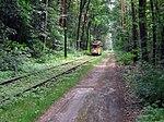 WS Waldstrecke Tw 28 2012-08-09 CLP 01.jpg