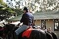 Warhorse Day, Jan. 30 (6680055307).jpg
