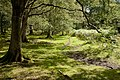 Warwickslade Cutting, original stream bed - geograph.org.uk - 1546542.jpg