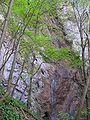 Wasserfallsteig Lilienfeld.jpg