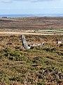 Watch Croft - view towards Mount's Bay.jpg