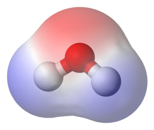 Chemical polarity - A water molecule, a commonly used example of polarity. Two charges are present with a negative charge in the middle (red shade), and a positive charge at the ends (blue shade).