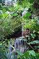 Waterfall in the Jungle - panoramio.jpg