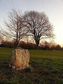 Westbury Parish Boundary Stone - geograph.org.uk - 302943