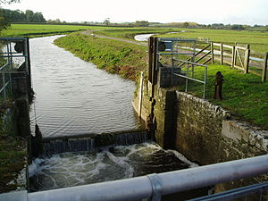 Westport Canal - The remains of Midelney lock. Beyond the towpath is the Southmoor main drain.