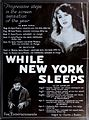While New York Sleeps (1920) - 10.jpg