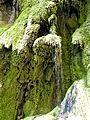 WikiProjekt Landstreicher Wasserfall Hinang 48.jpg