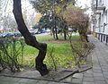 Winiary Poznan nature.jpg