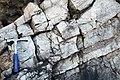 Winooski Dolomite (Middle Cambrian; Chimney Corner, Vermont, USA) 9.jpg