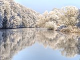 Winter-Regnitz-Bruderwald PC310003.jpg