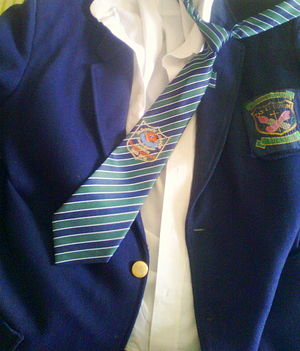 St. Francis' College - Winter uniform- navy blue blazer, plain white shirt and tie, with Quasquicentennial college crest issued in 2010 in celebration of the 125th anniversary of the college.
