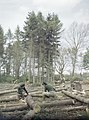 Women's Timber Corps Training Camp at Culford, Suffolk TR914.jpg