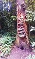 Wood carving in Lesnes Abbey Woods.jpg