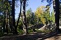 Woodland fall colors - panoramio.jpg