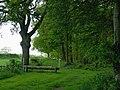 Woodland track near Chesterton, Shropshire - geograph.org.uk - 1303076.jpg