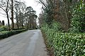 Y Ffordd i Bortmeirion - The Drive to Portmeirion - geograph.org.uk - 1204031.jpg