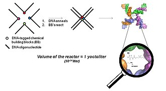 DNA-encoded chemical library - Fig. 5 Fundamental principle of the YoctoReactor. The center of 3, 4 and 5 way DNA junctions (a 4-way junction is shown here) becomes a yoctoliter-scale reactor where small molecule synthesis is facilitated in what has been termed the YoctoReactor (yR). Colored circles depict the chemical building blocks (BB) which are attached to carefully designed DNA oligonucleotides (black lines). Upon DNA annealing the BB are brought into proximity at the center of the DNA junction where they undergo chemical reaction.