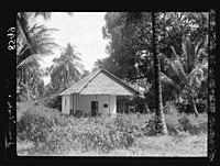Zanzibar. House in a grove of clove trees and palms LOC matpc.17665.jpg