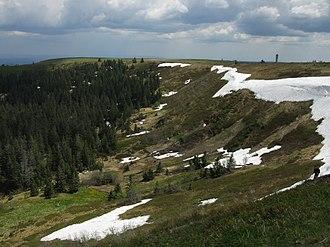 Zastler Loch - Upper slopes of the Zastler Loch with remains of the snow cornice (June 2013)