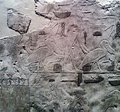Egyptian temple relief detail of pelicans