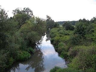 Łęg (river) River in Poland