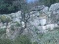 Ακρόπολη Στείριδας 059.jpg