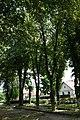 Виноградів, парк на площі Миру.jpg