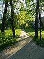 Графський парк (парк Ніжинського педінституту), Ніжинський район, м. Ніжин 74-104-5004 02.JPG