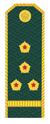 Капитан ФТС РФ.png