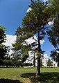 Марьино Парк Рыльский район Фото 6.jpg
