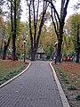 Маріїнський парк, алея.jpg