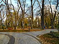Маріїнський парк 12.jpg