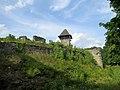 Невицький замок с.Невицьке 2.jpg