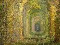 Осінь у Тунелі кохання.JPG