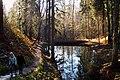 Парк виллы Рено, каскад прудов. Фото 1.jpg